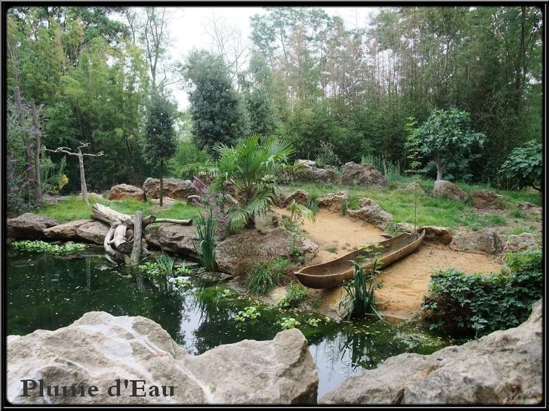 Le zoo de dou la fontaine - Piscine doue la fontaine ...